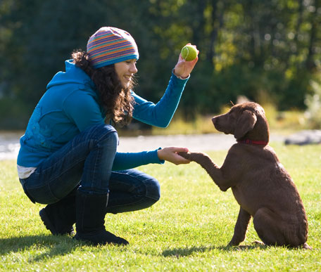 Woman training a puppy